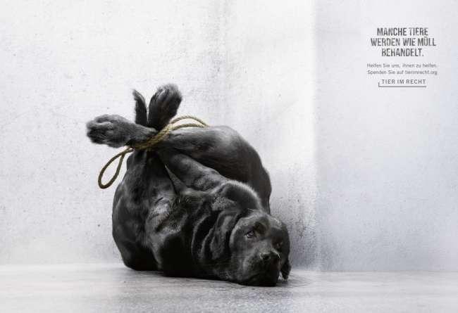 24примера социальной рекламы, которая достает досердца