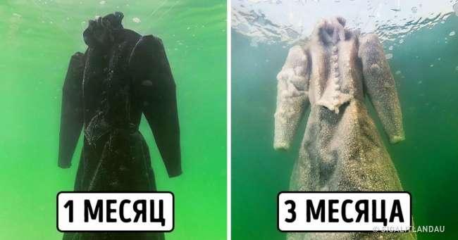 Художница на3месяца погружает старые вещи вМертвое море, иони превращаются вочто-то завораживающее