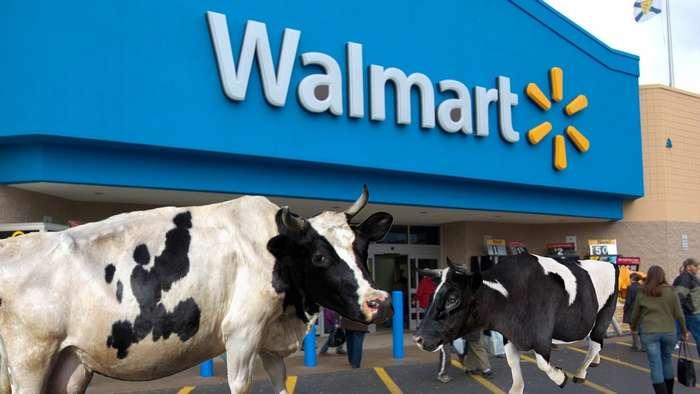 Магазинные страсти. Четверка самых необычных вещей, которые происходили в супермаркетах -Walmart-