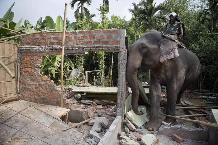 Как в Индии сносят незаконные строения