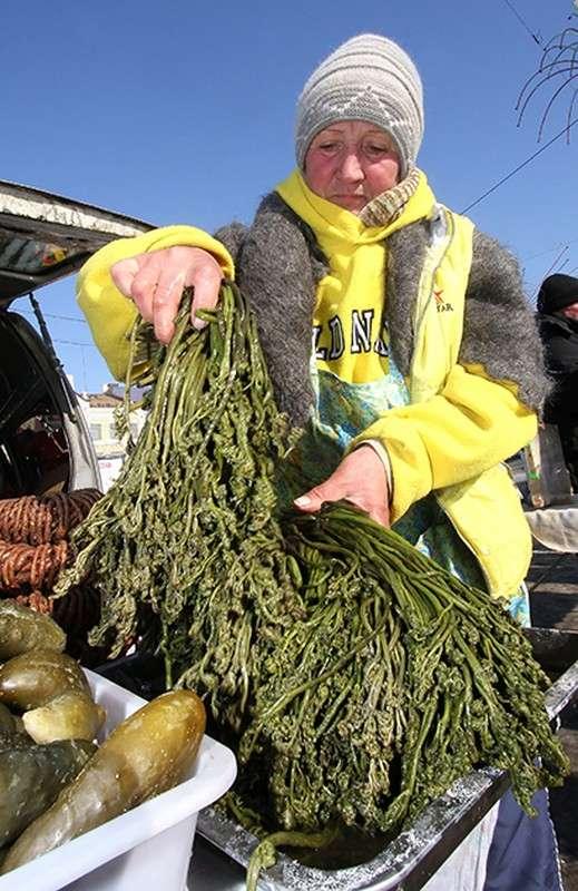 Возрождение высокой русской кухни