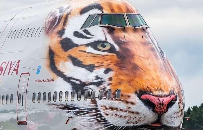 9 необычных самолетных раскрасок, которые, несомненно, сделают полет намного приятнее