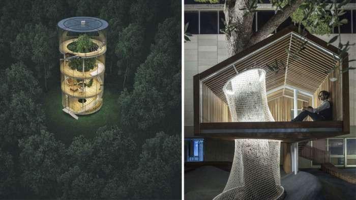 7 деревьев, которые -победили- архитекторов и стали неотъемлемой частью построек