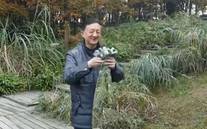 Китайцы придумали плащ-невидимку, за которым действительно не видно человека