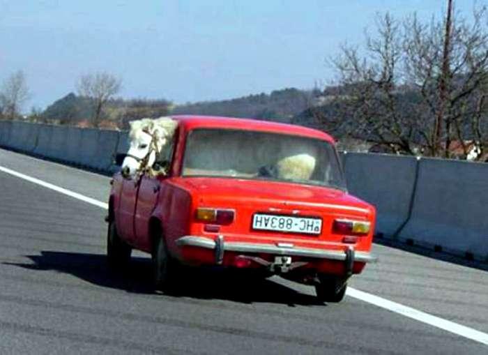 Чудаки на дорогах, встреча с которыми зарядит позитивом и заставит посмеяться от души (18 фото)