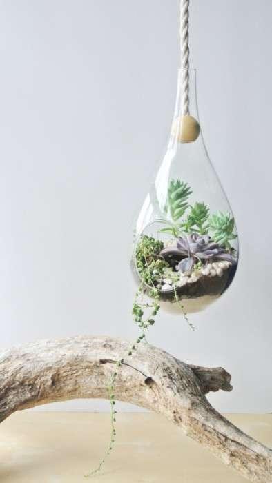 12 горшков и вазонов для суккулентов и кактусов для тех, кто не хочет заморачиваться с поливом