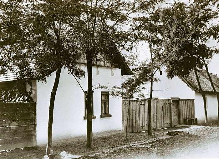 Венгерские ведьмы: женский криминальный синдикат 1914 &8212; 1929 гг.