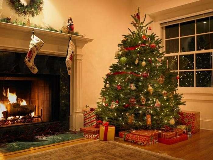 Американец получил неприятных соседей в комплекте с новогодней елкой