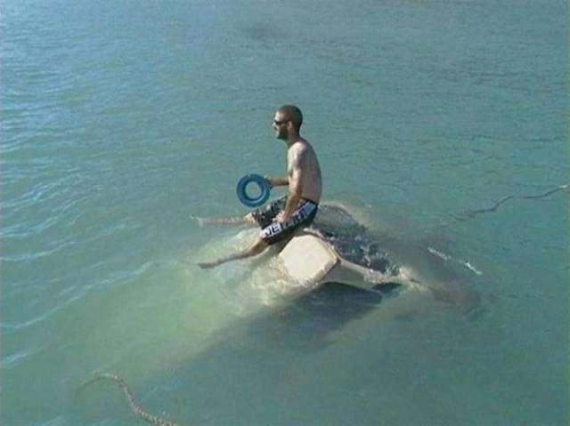 Забавные фотографии с рыбалки (18 фото)