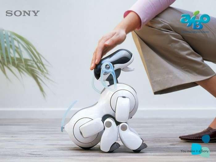 Если у вас нет друга, его заменит робот-собака (6 фото и 1 видео)
