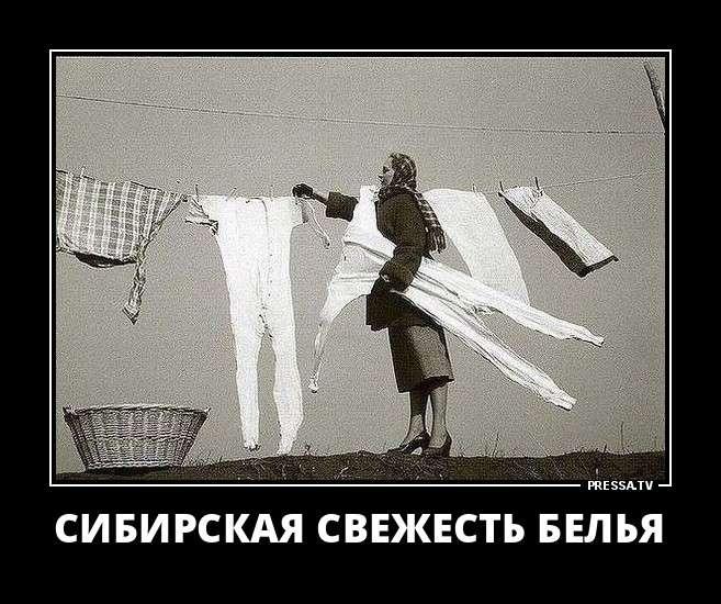Забавные демотиваторы о повседневной жизни (45 фото)