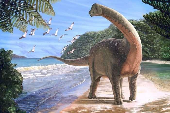 Мансуразавр - открытие палеонтологов в Египте (7 фото)