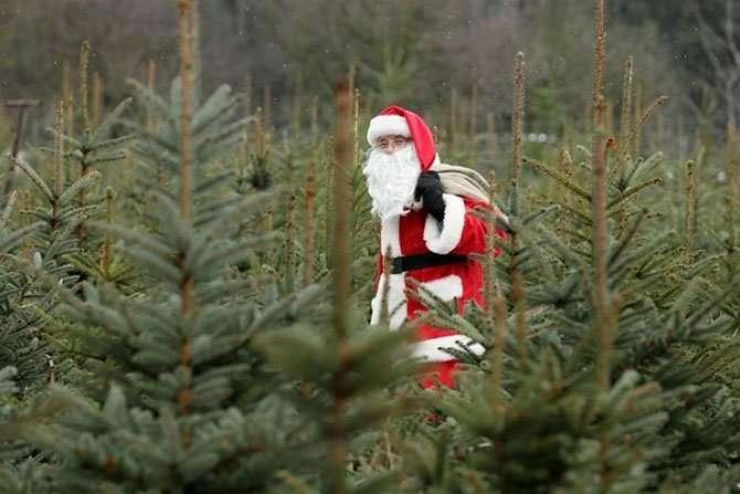 Как выглядит Дед Мороз в разных странах-15 фото-