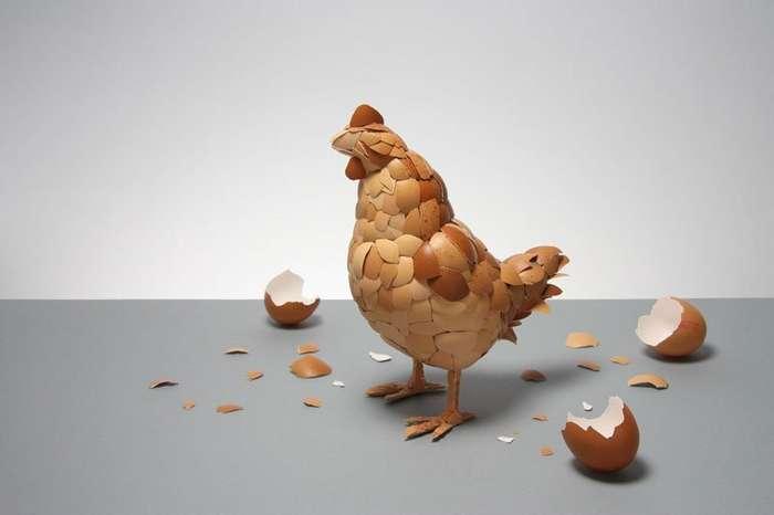 Используйте яйца по полной-28 фото-