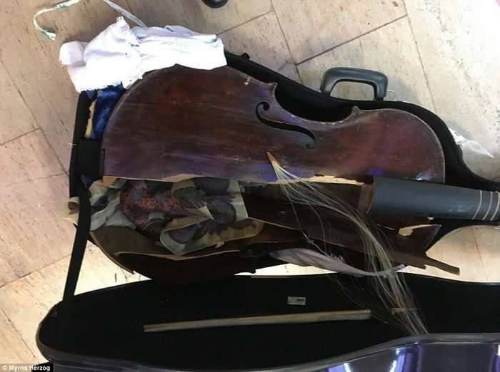 В самолете Alitalia серьезно пострадал музыкальный инструмент 17 века-5 фото-
