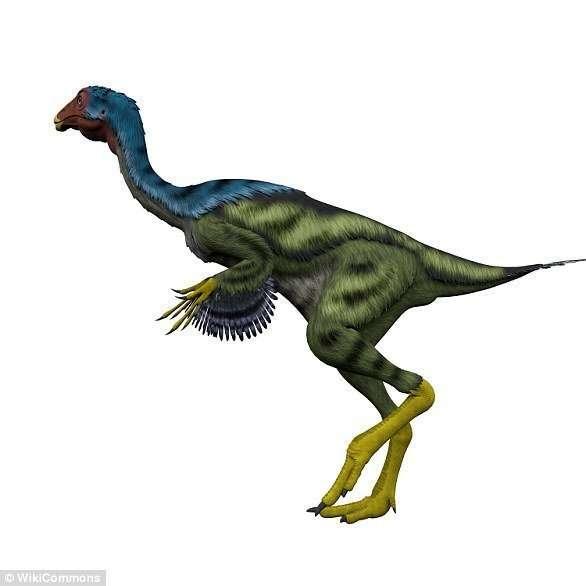 В Китае нашли яйца динозавров возрастом 130 миллионов лет-5 фото-
