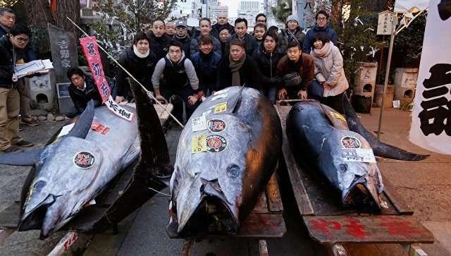 В Китае огромную рыбину продали за 323 тысячи долларов-1 фото-
