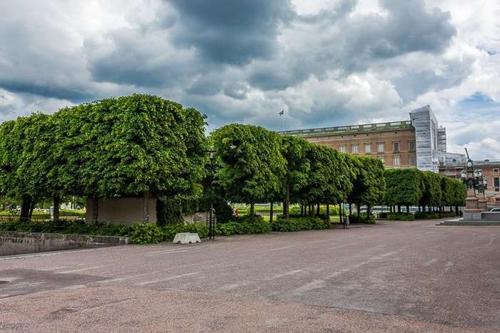 Королевский дворец в Стокгольме-26 фото-
