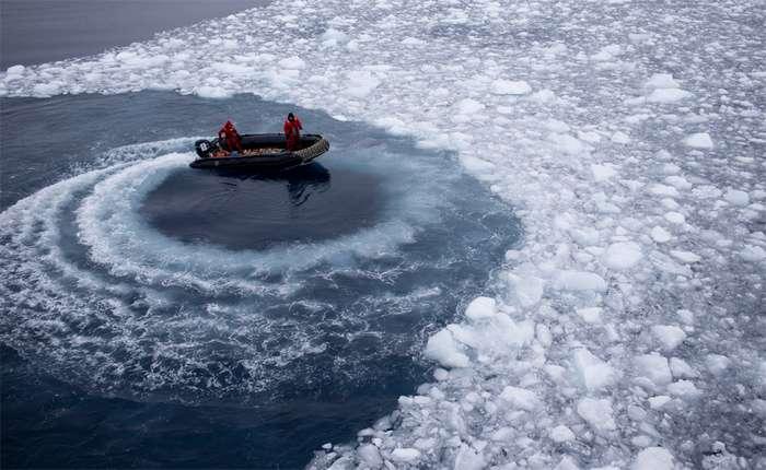 Северный полюс направляется в сторону Лондона