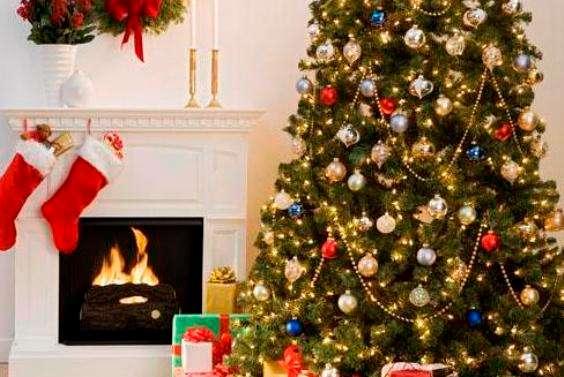 Куда можно использовать засохшую новогоднюю ёлку