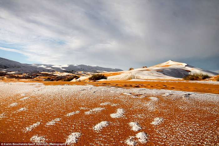 Зимнее чудо: снегопад в пустыне Сахара