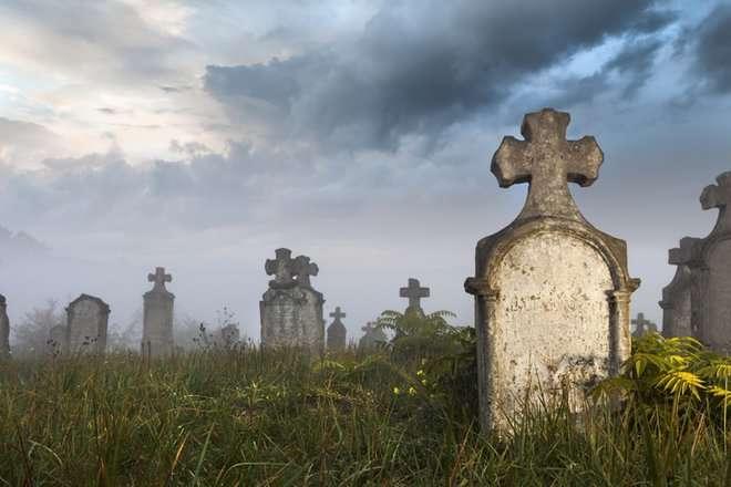 -Лара Крофт, твои коллеги отжигают!-, или кто такие современные -расхитители гробниц-, и зачем им нужны гниющие тела?