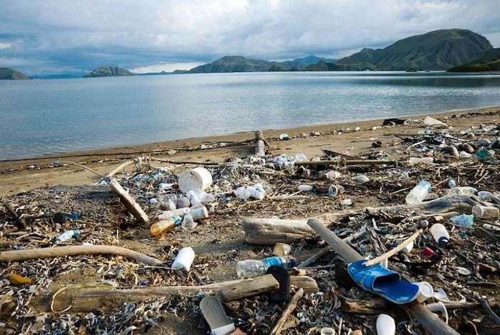 Почему никогда не нужно пить через пластиковую соломинку: 2 веские причины