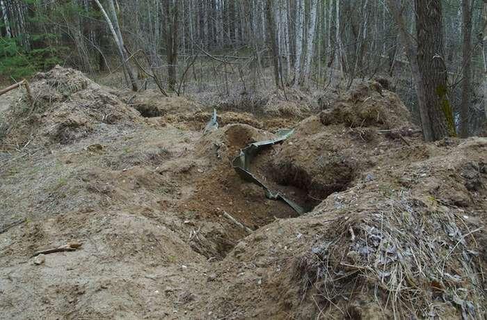 Поехали за грибами, а нашли следы применения неведомого по мощности оружия