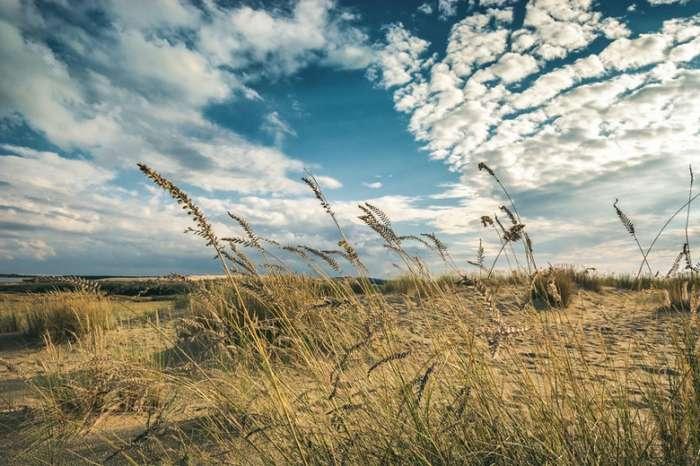 Жемчужина Балтийского моря - Куршская коса в Литве