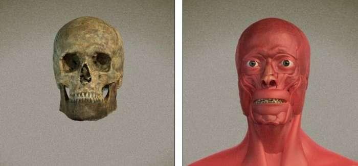 3D-реконструкция внешнего облика святого Валентина