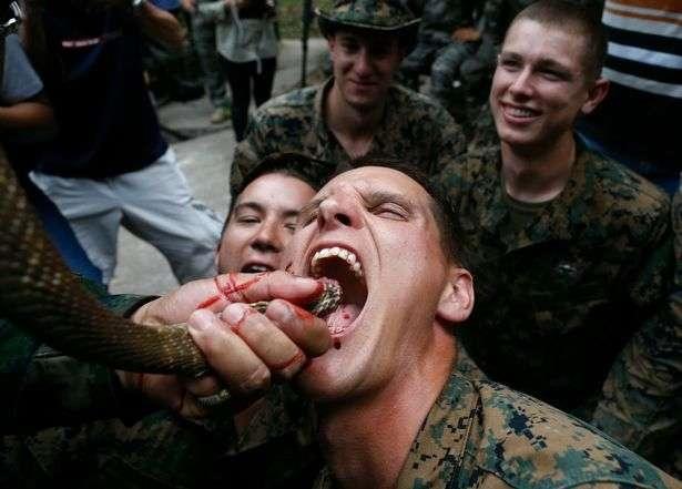 Кровь из кобры... Курс выживания в условиях джунглей для морских пехотинцев США