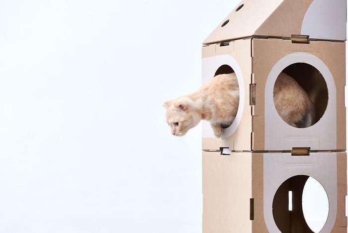 Кошки точно будут в восторге! Модульные эко-домики из картона