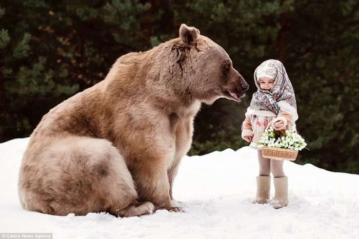 Маленькая девочка позирует с 300-килограммовым медведем