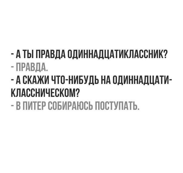 Смешные актуальные цитаты о жизни