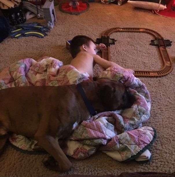 Дети и собаки - лучшие друзья