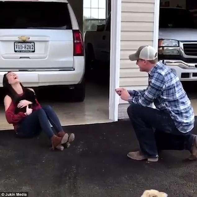 Щенок принес хозяйке потрясающую новость! То, что она прочла на ошейнике, свалило её с ног-5 фото-