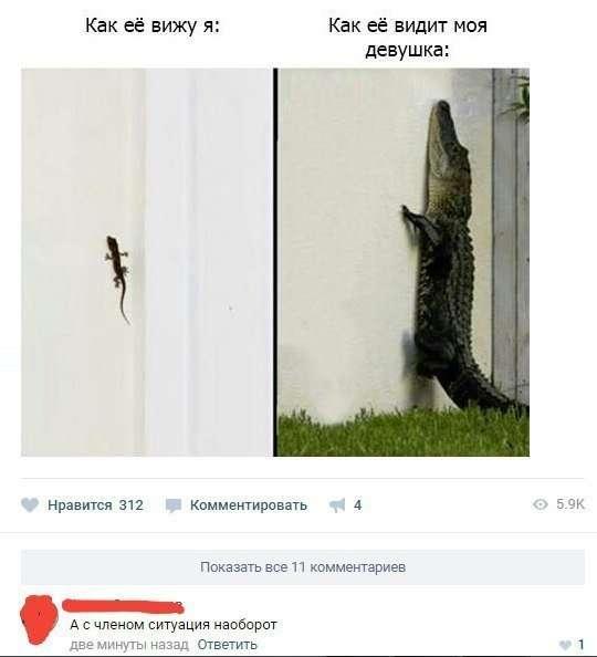Смешные комментарии и высказывания из социальных сетей-45 фото-