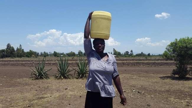 Эксперимент вКении опроверг миф, что деньги портят людей