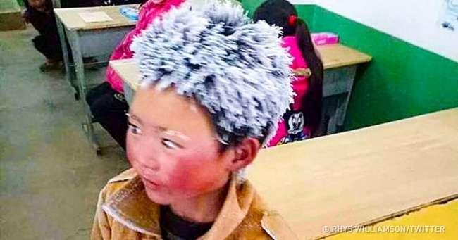 Для -ледяного мальчика-, который пришел сдавать экзамен несмотря намороз, собрали $450тыс.