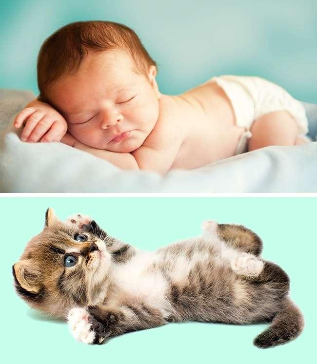 Почему младенцы такие пухлые иеще 4особенности, которые есть учеловека при рождении