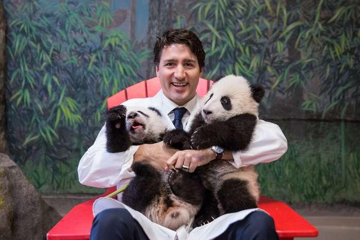 15ответов навопрос -Почему изКанады никто неуезжает?-