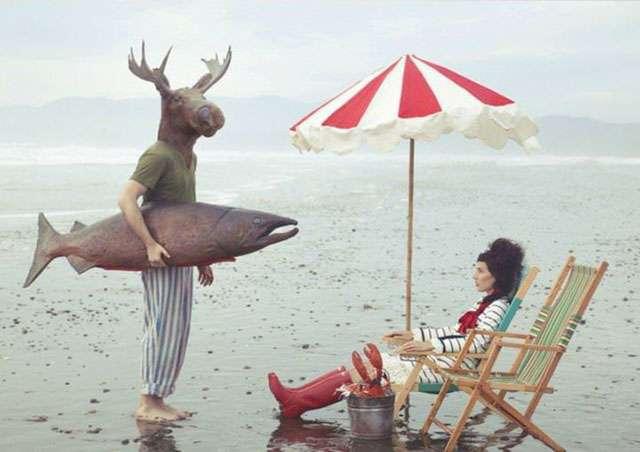 Маразмы из Канады (50 фото)