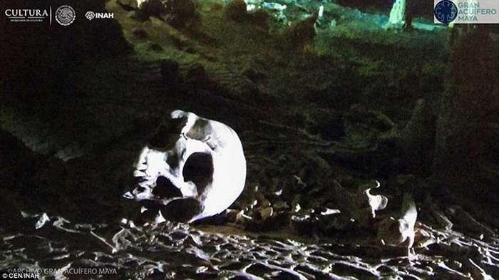 В подводных пещерах Мексики нашли уникальные артефакты цивилизации майя-10 фото + 1 видео-