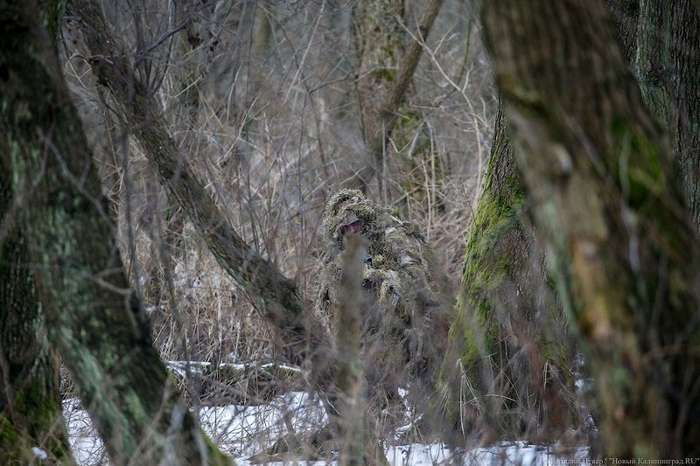 Как снайперы Балтфлота вели разведку в лесу-16 фото-