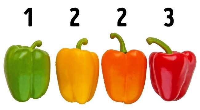 Большинство изнас выбирает овощи неправильно. Памятка для тех, кому важна нетолько польза, ноивкус