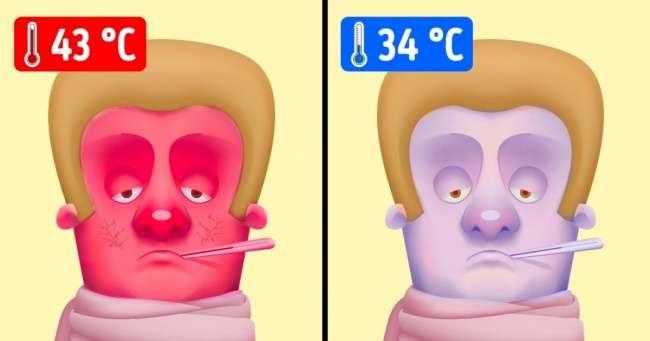 Что произойдет свами при экстремально низкой либо высокой температуре тела