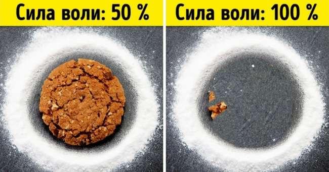 9простых экспериментов, которые докажут, что мыничего неконтролируем вэтой жизни