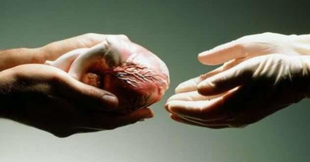 -С тела по нитке-, или как мертвые могут помочь живым?
