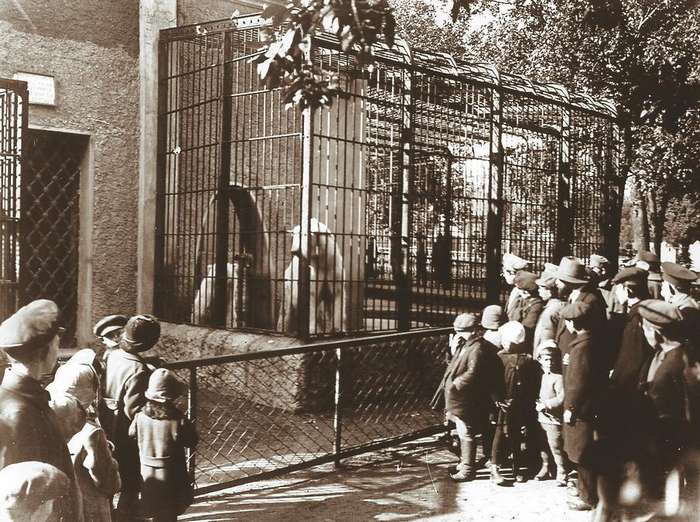 Московскому зоопарку 154 года
