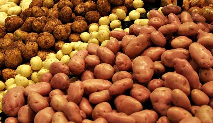 Овощи, которые могут убить человека. Часть 2